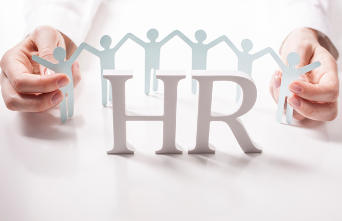 Image result for hr consultant
